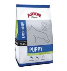 Arion Original Puppy Large...