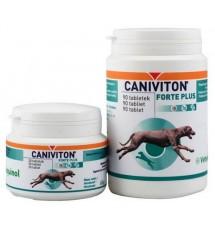 Caniviton Forte Plus 30...