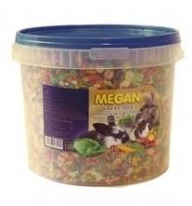 Megan Exclusive dla gryzoni...